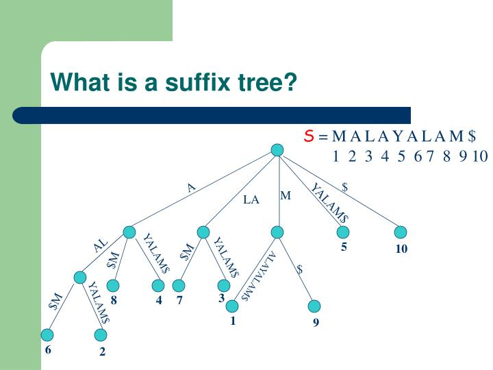 What is a suffix tree?