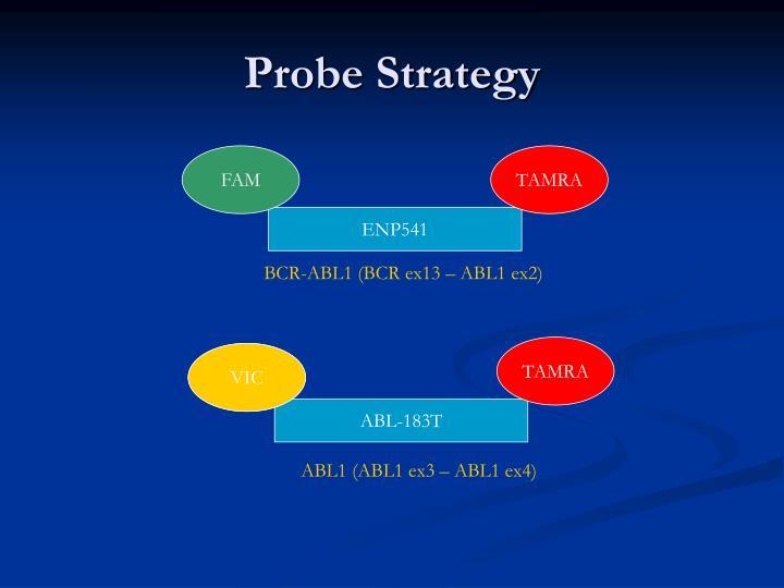 Probe Strategy