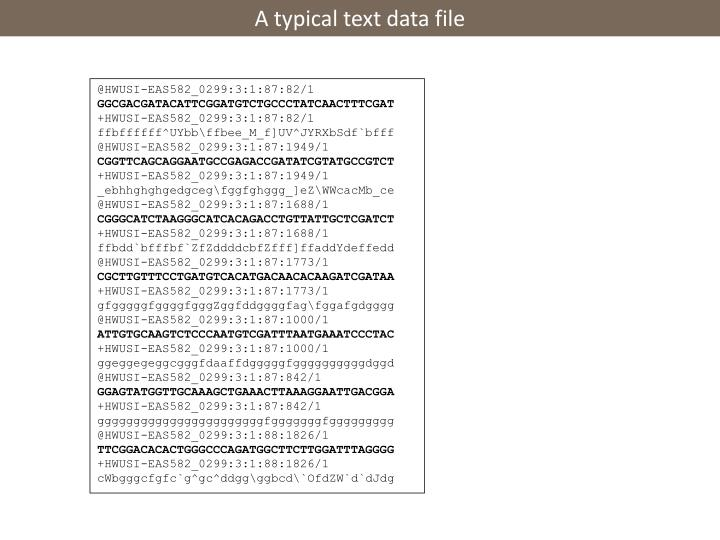 A typical text data file