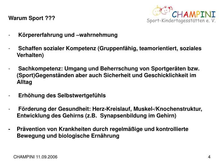 Warum Sport ???