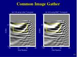 common image gather