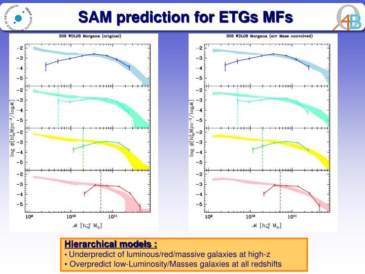 SAM prediction for ETGs MFs