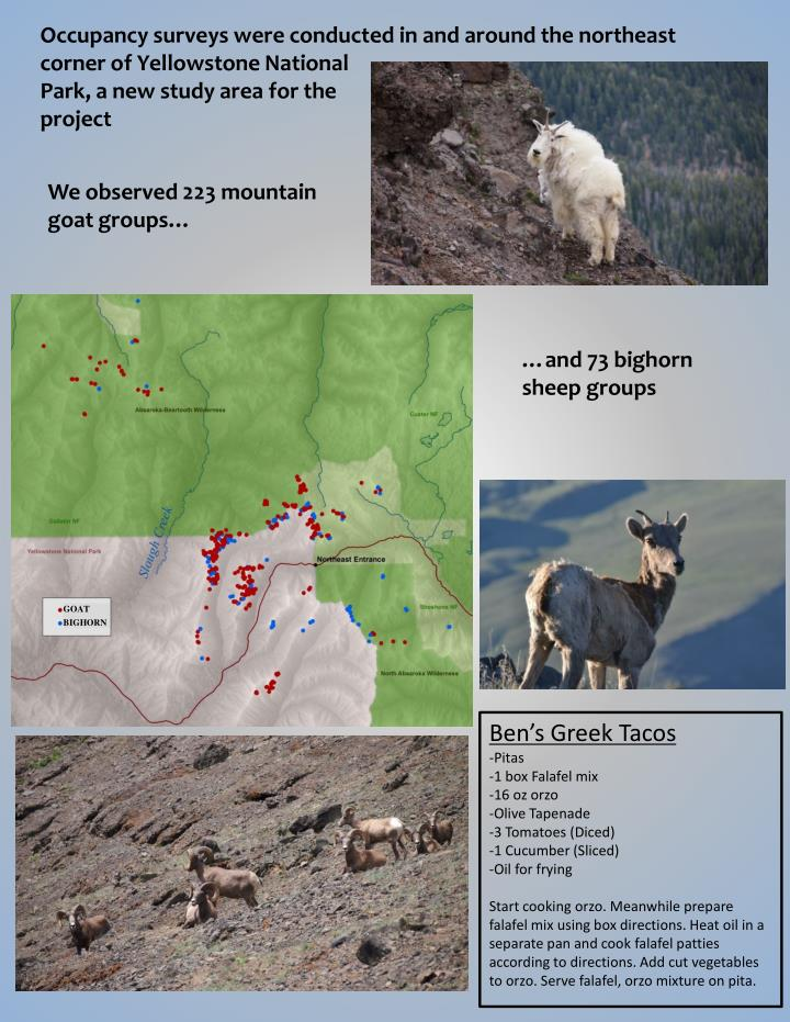 Occupancy surveys were conducted in and around the northeast corner of Yellowstone National