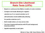 branch site likelihood ratio tests lrts