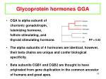 glycoprotein hormones gga