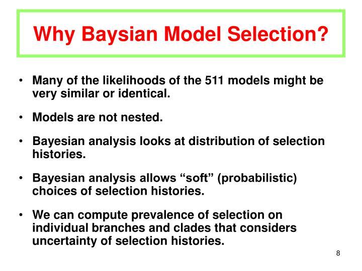 Why Baysian Model Selection?