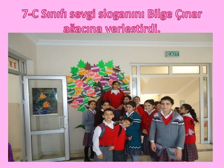 7-C Sınıfı sevgi sloganını Bilge Çınar ağacına yerleştirdi.