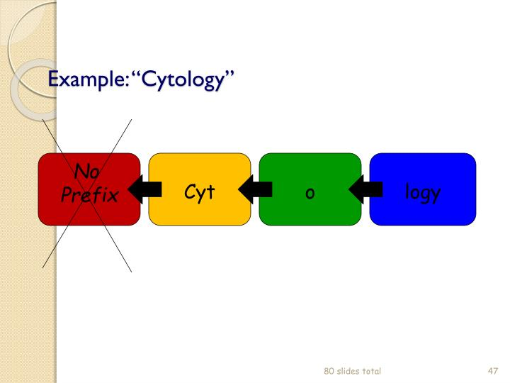 "Example: ""Cytology"""