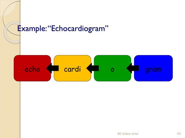"Example: ""Echocardiogram"""
