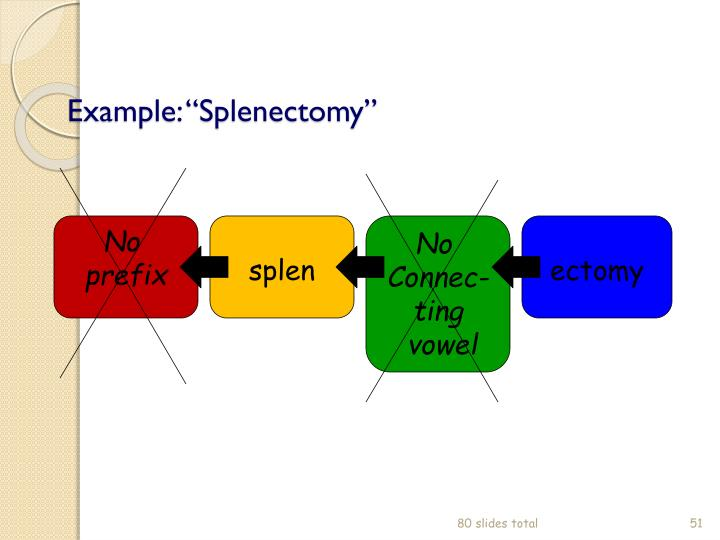 "Example: ""Splenectomy"""