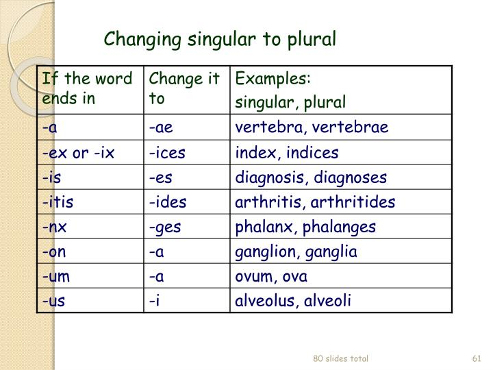 Changing singular to plural