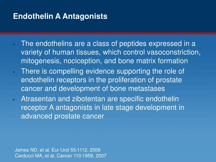 Endothelin A Antagonists