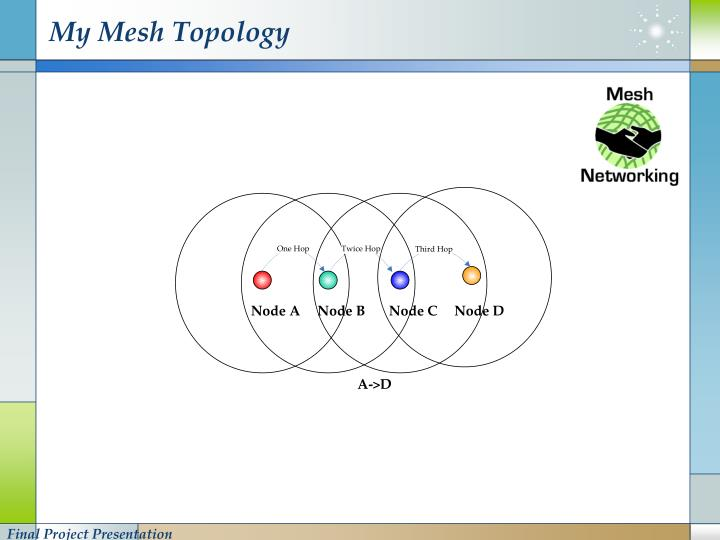 My Mesh Topology