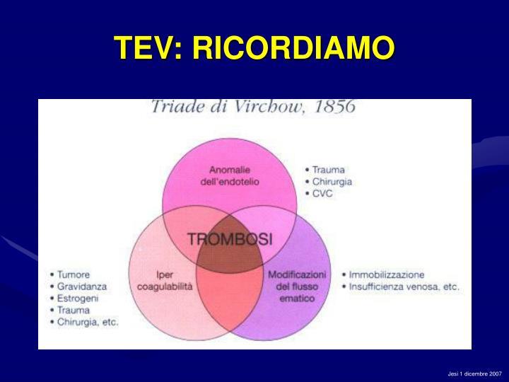 TEV: RICORDIAMO