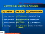 commercial business activities