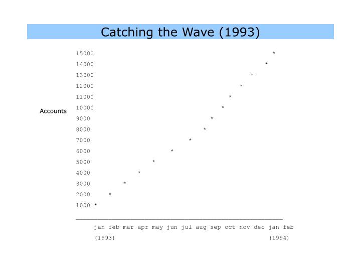 Catching the Wave (1993)