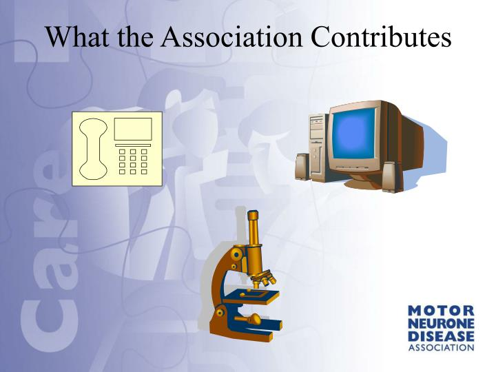 What the Association Contributes