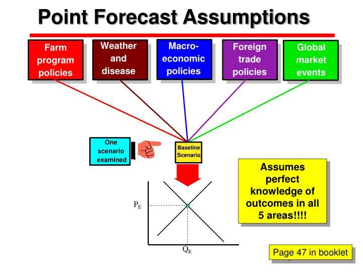 Point Forecast Assumptions