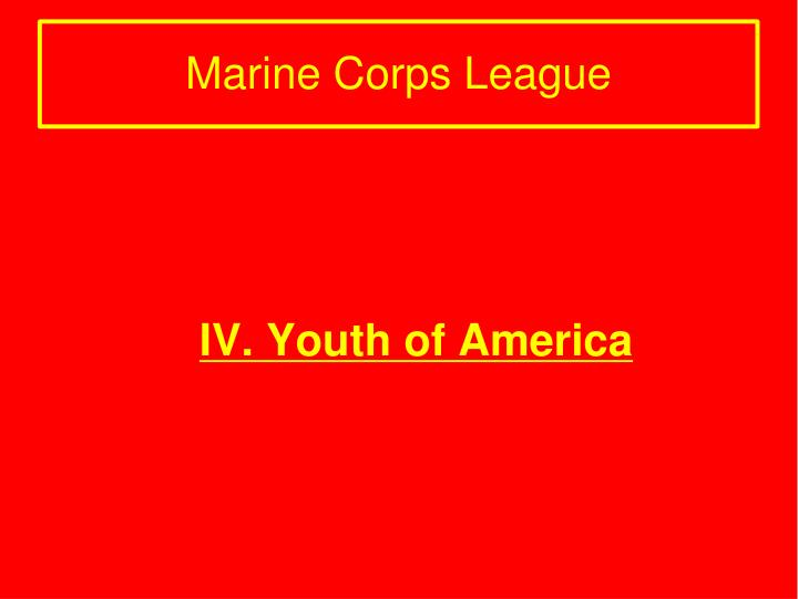 IV. Youth of America