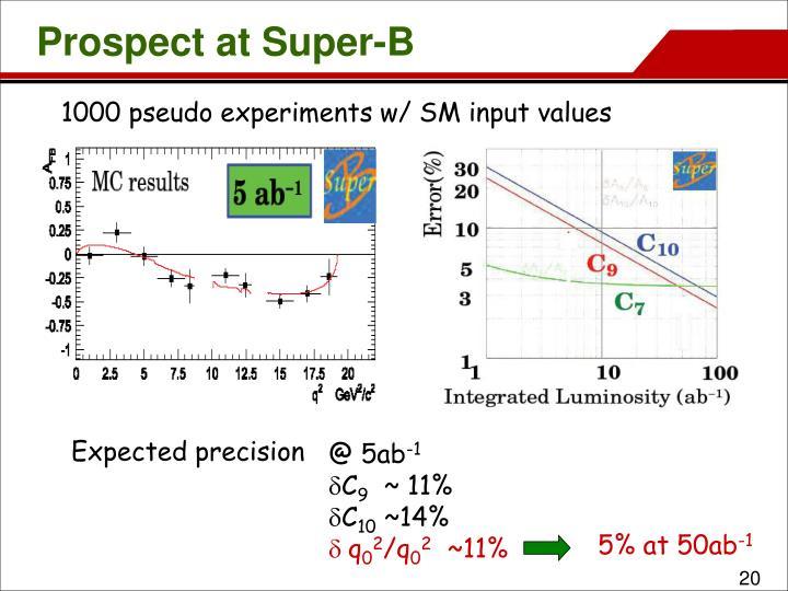 Prospect at Super-B