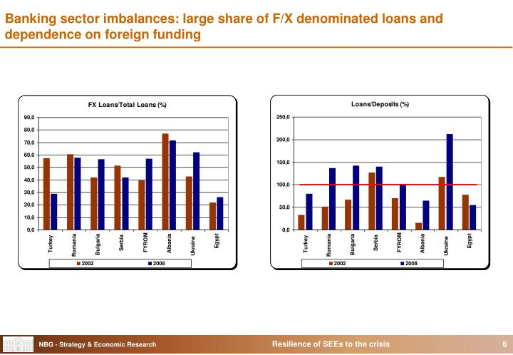 Banking sector imbalances: large share of F/X denominated loans and dependence on foreign funding