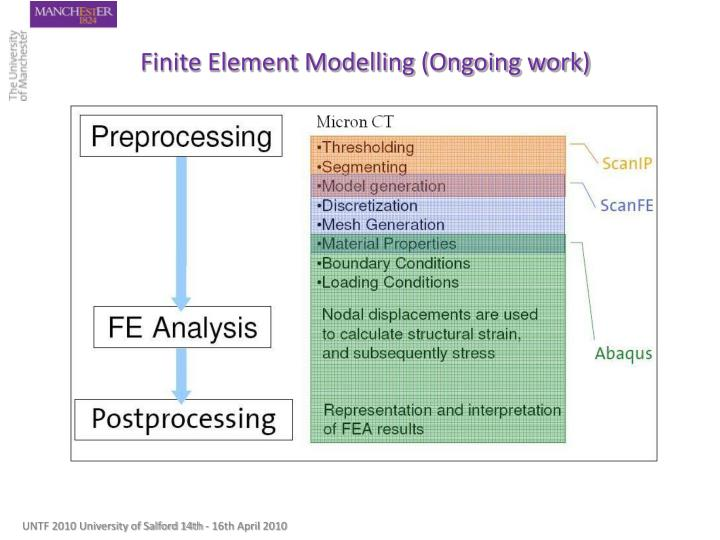 Finite Element Modelling (Ongoing work)