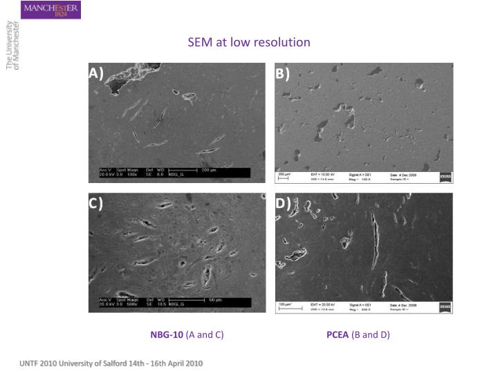 SEM at low resolution