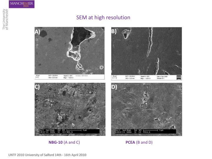 SEM at high resolution