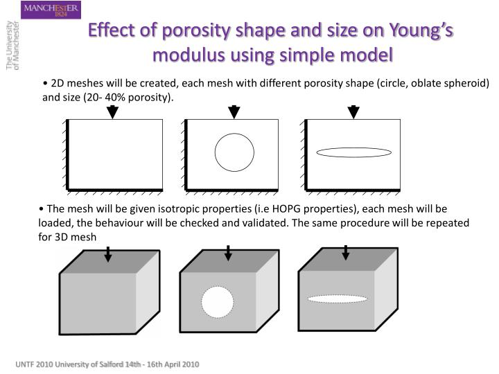 Effect of porosity shape and size on Young's