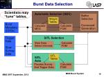 burst data selection6