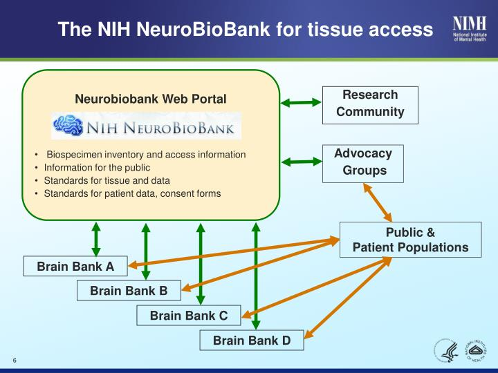 The NIH NeuroBioBank for tissue access