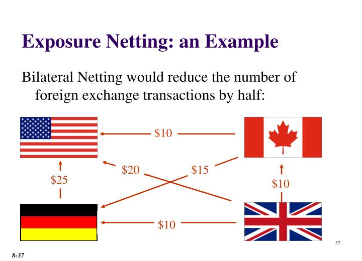 Exposure Netting: an Example