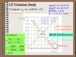 cp violation study