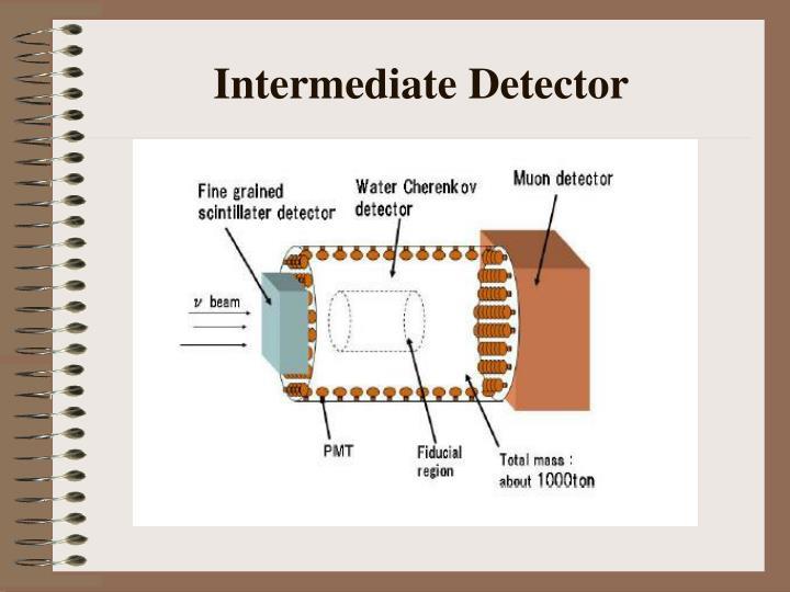 Intermediate Detector