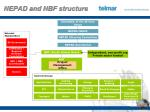 nepad and nbf structure