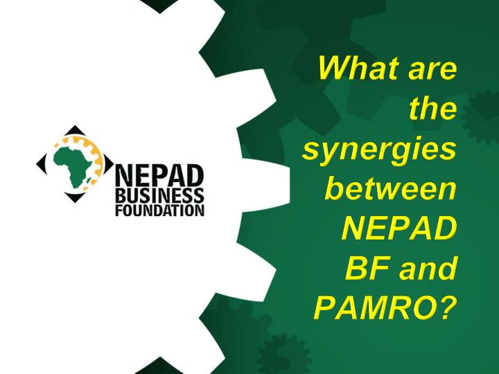 What are the synergies between NEPAD BF and
