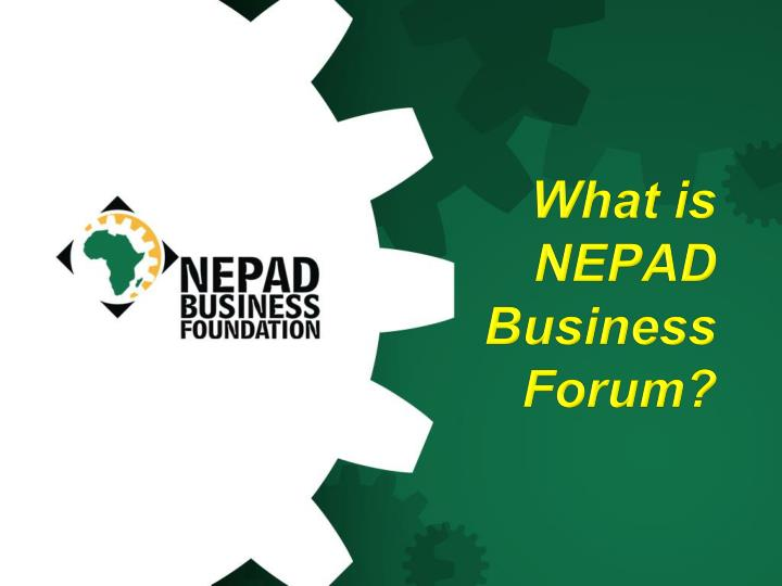 What is NEPAD Business