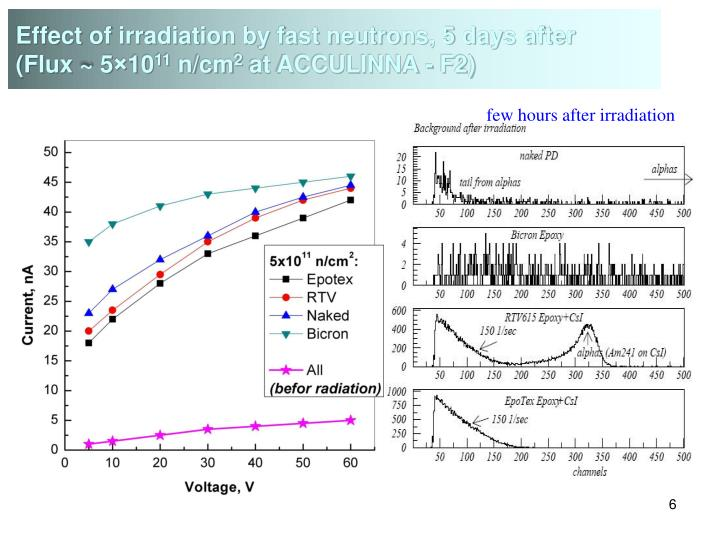 Effect of irradiation by fast neutrons, 5 days after
