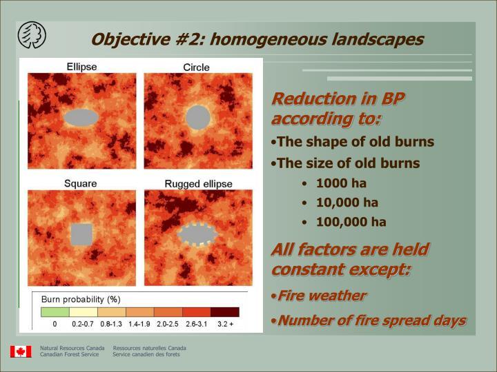 Objective #2: homogeneous landscapes