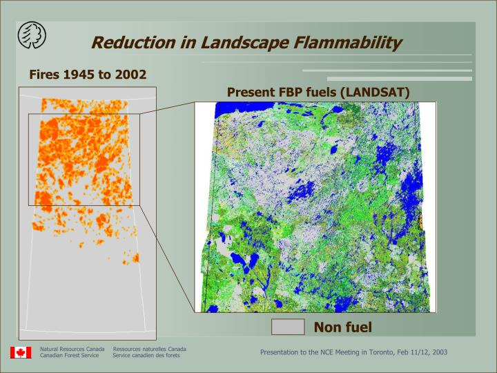 Reduction in Landscape Flammability