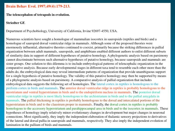Brain Behav Evol. 1997;49(4):179-213.