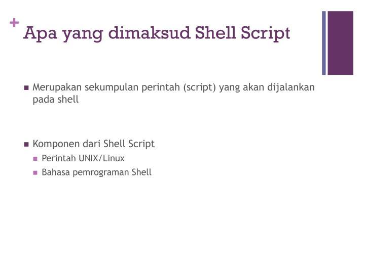 Apa yang dimaksud Shell Script