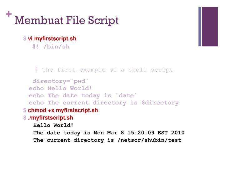 Membuat File Script
