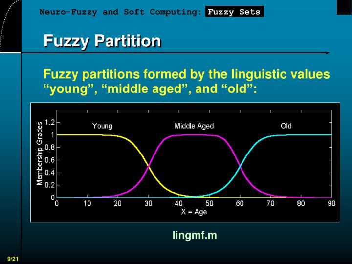 Fuzzy Partition
