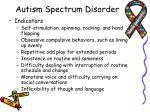 autism spectrum disorder1