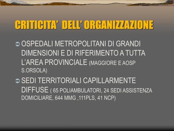 CRITICITA'  DELL' ORGANIZZAZIONE