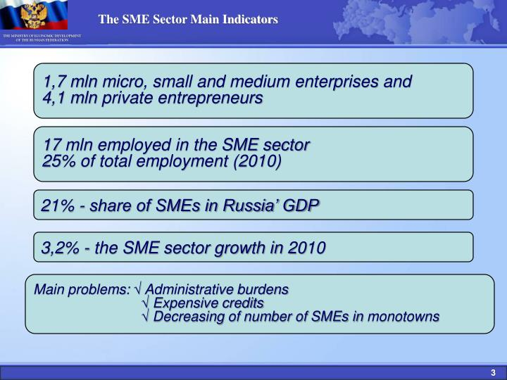 The SME Sector Main Indicators