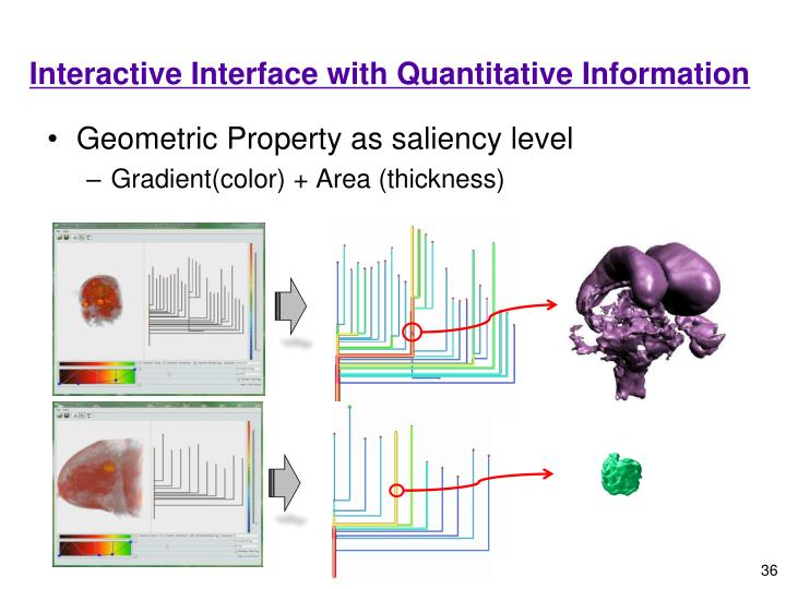 Interactive Interface with Quantitative Information