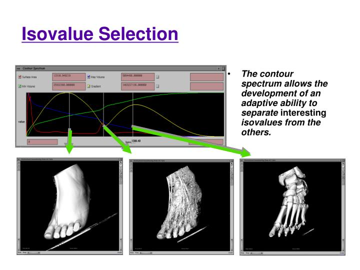 Isovalue Selection