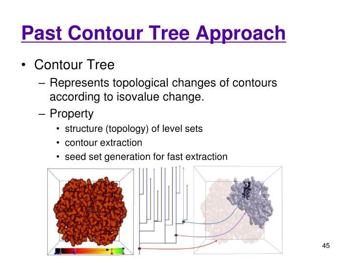 Past Contour Tree Approach